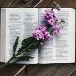Читання Євангелія від Луки від 07.06 до 13.06