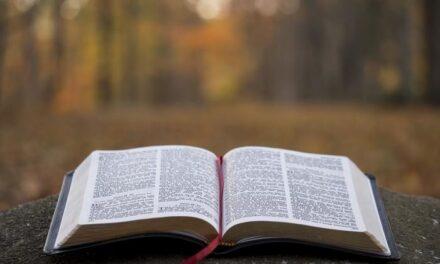 Послання до божого люду Синоду Єпископів Католицької Церкви