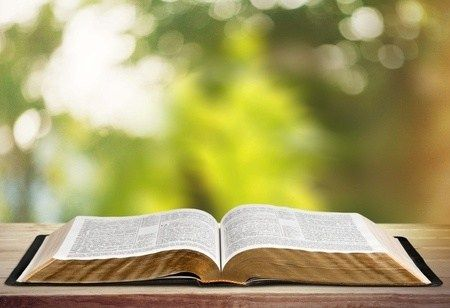 Читання Євангелія від Луки від 19.04 до 25.04