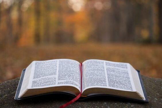 Читання Євангелія від Луки від 03.11 до 09.11