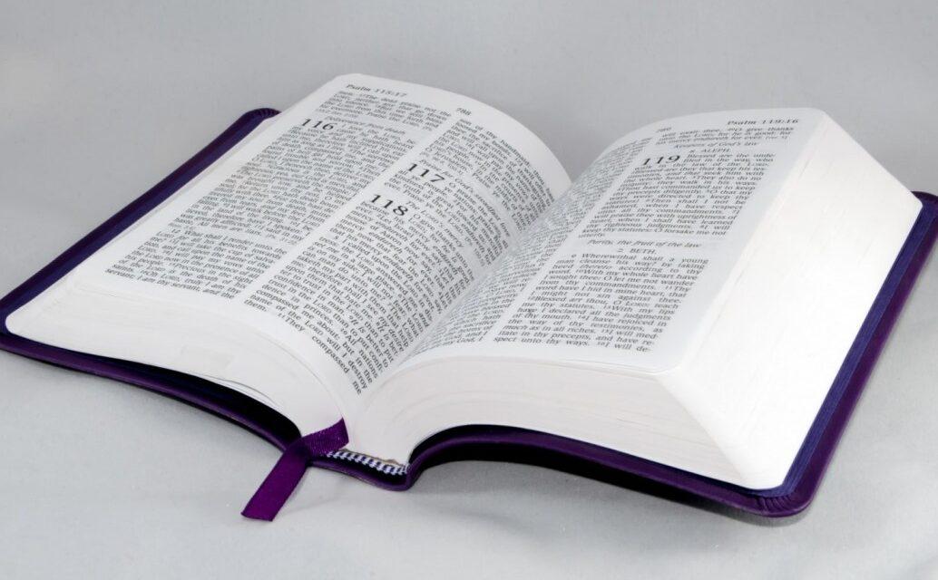 Читання Євангелія від Луки від 17.05 до 23.05