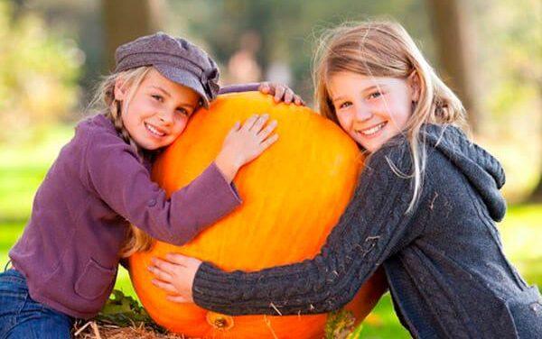 Хелловін ми не приймаємо, але любов до гарбузів збережемо!