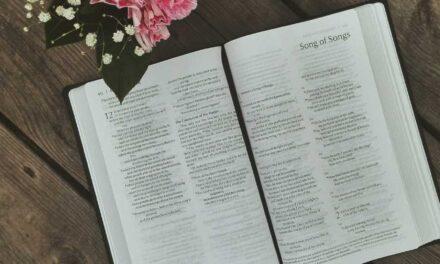 Читання Євангелія від Луки від 14.07 до 20.07