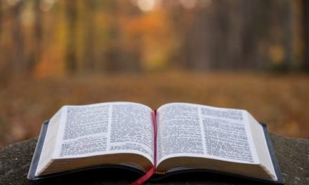 Читання Євангелія від Луки від 08.09 до 14.09