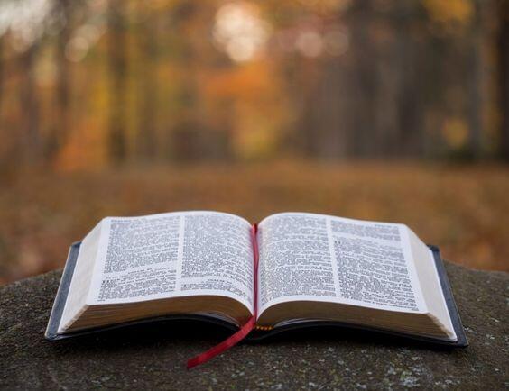 Читання Євангелія від Луки від 06.10 до 12.10